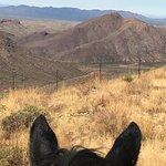 Foto di Elkhorn Ranch