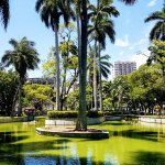 Photo of Moscoso Park