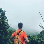 Monteverde Cloud Forest Biological Reserve Foto