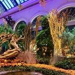 Conservatory & Botanical gardens at Bellagio