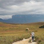 Trek towards the base camp