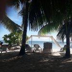 Lugar de palmeras, sillas, toldos y reposeras