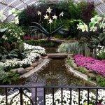 Photo de Phipps Conservatory