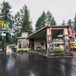 Изображение Timbers Motel