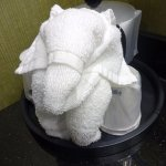 Towel Folded To Look Like An Elephant Greeted Us In Bathroom