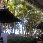 Vivo Palm Cove Foto