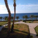 Photo of Continental Plaza Beach Resort
