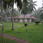 Foto de Tamarind Tree Hotel
