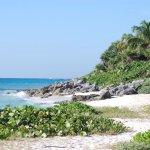 plage à coté de l'hôtel Viva Wyndham Maya