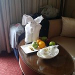 Our room cleaner spoiled us!