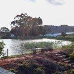 Tanagra Wine + Guestfarm Foto