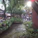 Foto de Parque Patrimonio Mundial, Lijiang