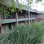 Photo of Bakubung Bush Lodge