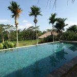 La piscine à débordement en contrebas de nos bungalows