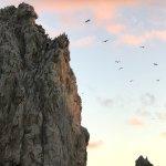 Photo de Cabo San Lucas Tours