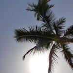 Ocean Bay Hotel & Resort Foto