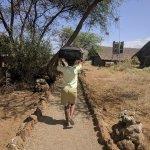 Kibo Safari Camp afbeelding