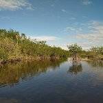 Foto de Capt Mitch's - Everglades Private Airboat Tours