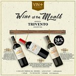 Enjoy discount 20% off for BODEGA TRIVENTO ARGENTINA during this month only at VIN+