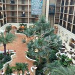Four Points by Sheraton Suites Tampa Airport Westshore Foto