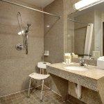 Bathroom Accessible Walk In Shower