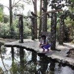 Photo of El Nispero Zoo and Botanical Garden