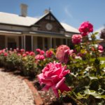 Our beautiful homestead and rose garden. Bookable for private functions and garden parties