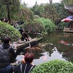 Photo of Chengdu Renmin Park