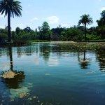 Photo of Royal Botanic Gardens Victoria - Melbourne Gardens