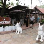 Rabbit Resort Foto