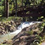 Foto de Flor do Vale - Alambique e Parque Ecologico