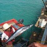 Swieżutkie rybki -:)