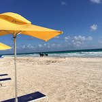 Beach chairs available for guests on pink sands beach