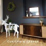 Harper Cukiernia