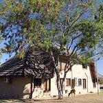Mabula Game Lodge Foto
