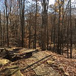 Foto de Cherry Ridge Retreat
