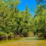 Beautiful River Trip to Canoe on - Courtois