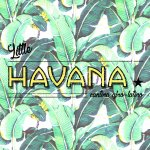 Little Havana Cantina Afro-Latina