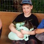 Foto de Kangaroo Creek Farm