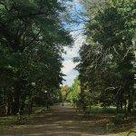 Park Cytadela Foto