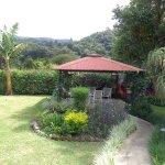 Beautiful garden with bohio