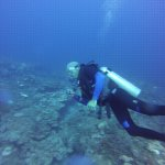 Diving in the 2nd largest coral reef in the world