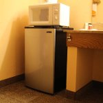 fridge and microwave (in room)