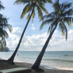Photo de Coco Palm Beach Resort & Spa