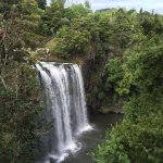 Photo of Whangarei Falls Holiday Park & BBH Backpackers