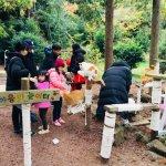 제주김녕미로공원