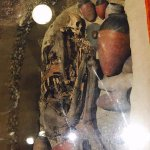 Unembalmed Mummy