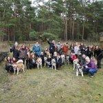 Team Ausflug mit Huskies im November 2017