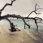 Φωτογραφία: Bandos Maldives