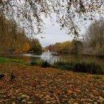 Foto de Parque de St. James